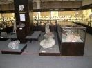 Внутренняя экспозиция музея