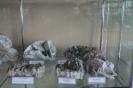 Экспозиция минералов кальцита