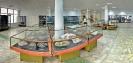Зал минералогии месторождений полезных ископаемых