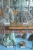 Экспозиция минералов берилла