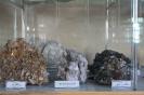 Друзы кальцита и кварца